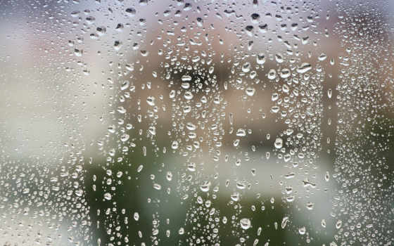 капли, дождя, glass