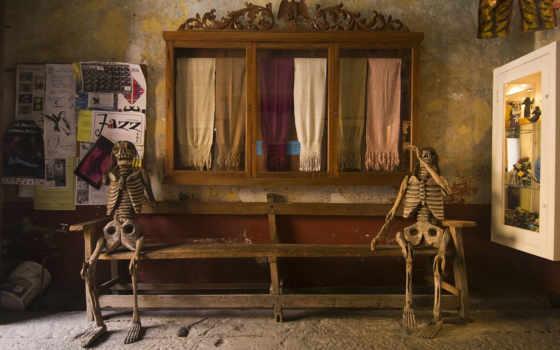 скелеты, дек, магазин