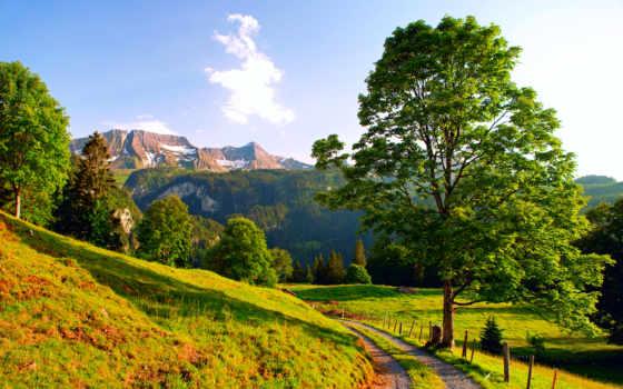 швейцария, mountains, альпы, summer, дорога, desktop,