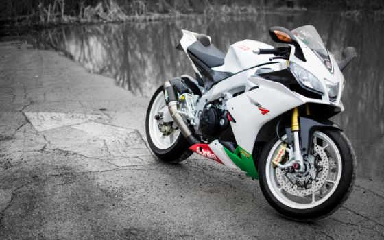 aprilia, white, rsv, bike,
