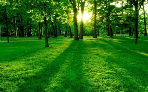 пейзажи -, природа, landscape, красивые, shui, feng, весна, landscapes, страница,