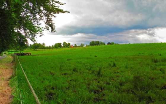 природа, зелёный, german, landscape, фотографий, бавария, пейзажи -, chiemsee,