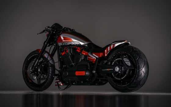 harley, davidson, chopper, мотоцикл, custom, thunderbike, motor, bike, sepeda, softail, king