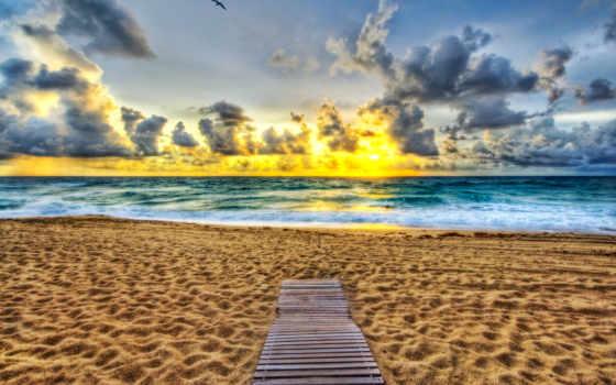 пляж, rising, кнут, florida, palm, ocean, песок,