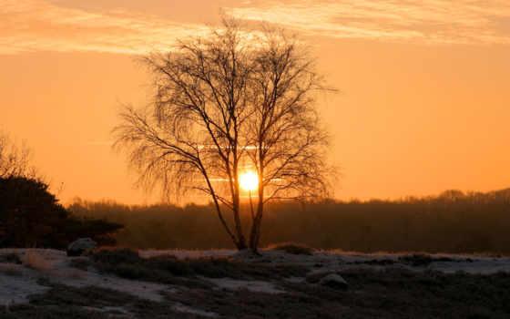 лес, небо, пейзаж, закат, зима, картинку, картинка, кнопкой, мыши,