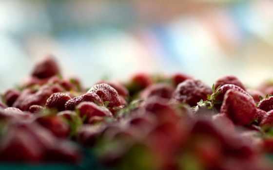 клубника, плод, еда