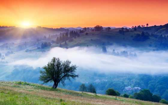 небо, восход, страница