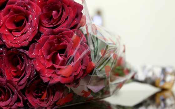 букет, цветов, розы, cvety, макро, прочитать, more,