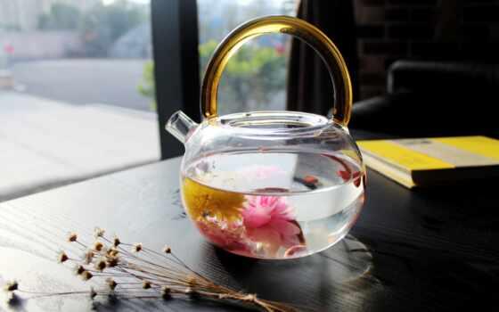цветы, чая, water, company, гороскоп, today, ждать, bloom, мяч, hot