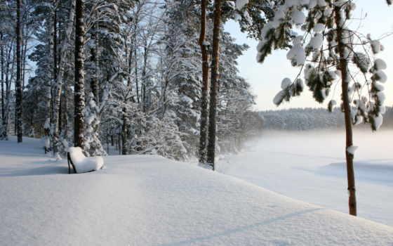 зима, лес Фон № 32058 разрешение 1920x1080