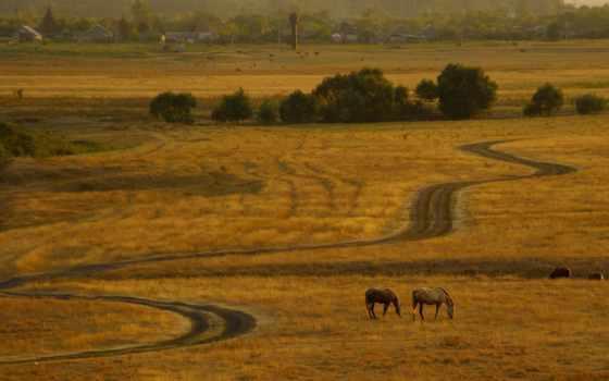дорога, кони, проселочная, вечер, закат, car, run, река, поле,