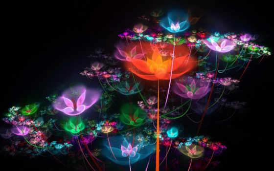 цветы, графика, splash
