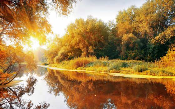 утро, осень, осенние, лесу, осеннее, утра, река, природа,