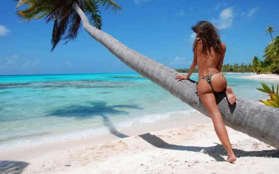 девушка, пляж, пляже, море, девушек, плакат, стены, palm, спины,