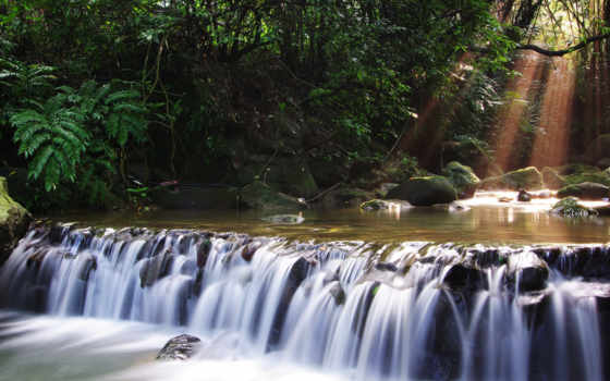 водопад, деревья