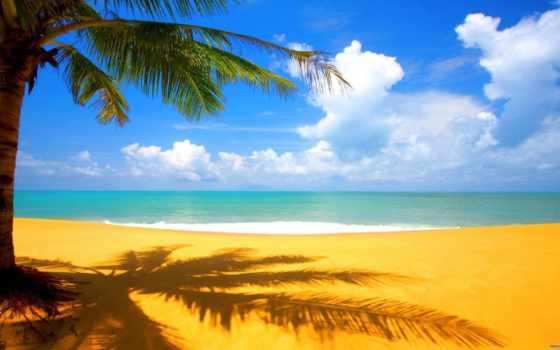 пляж, пляжи, поразительные