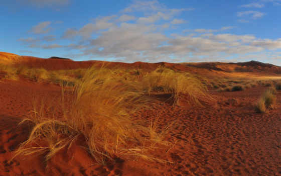 пустыня, песок, links,