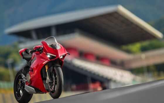 ducatus, panigale, мотоцикл, quto, dukatit, bike, цена