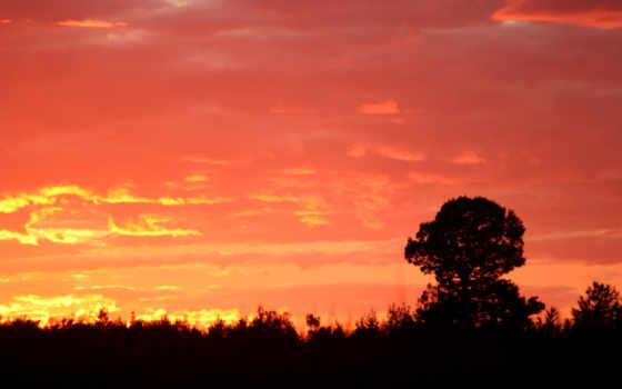 sunset, wallpaper Фон № 9249 разрешение 1920x1200
