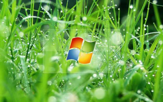 зелёный, бейдж, microsoft, windows, компьютер,