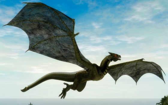 creatures, существа, dragon, балла,