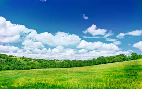 зелёный, товар, макро, liebfrauenkirch, лампочка, trier, getbg, cosmos, природа,