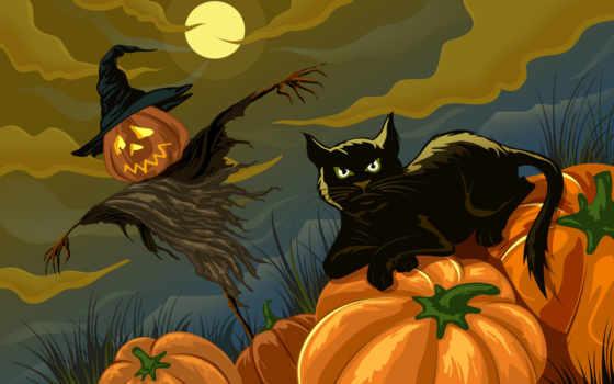 halloween, preto, gato, тыквы, купить, ночь, кот, фотографий, рисованное, праздники,