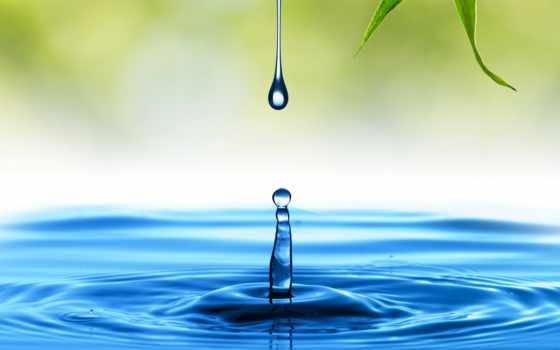, капля, вода, зелень, голубой,
