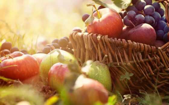 яблоки, виноград