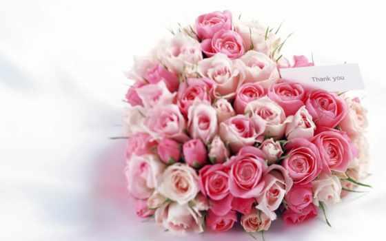 роз, букет, flowers