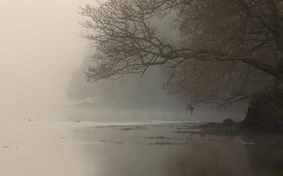 туман, река