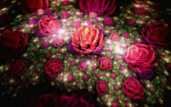 цветы, самые, красивые