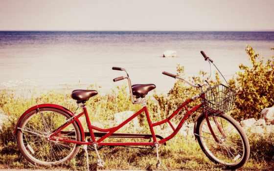 bike, природа, настроения