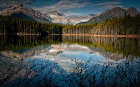 лес, máy, небо, woodstar, free, озере, горы,