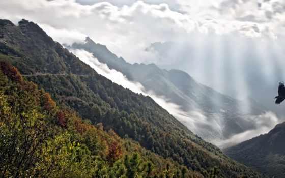 flying, mountains, птица, birds, гора, туман, со, clouds,