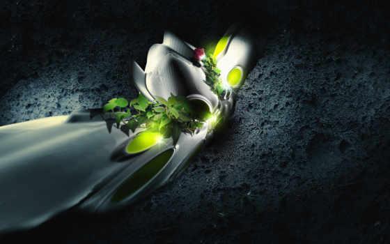 текстура, формы, цветы, листва, cvety, текстуры,