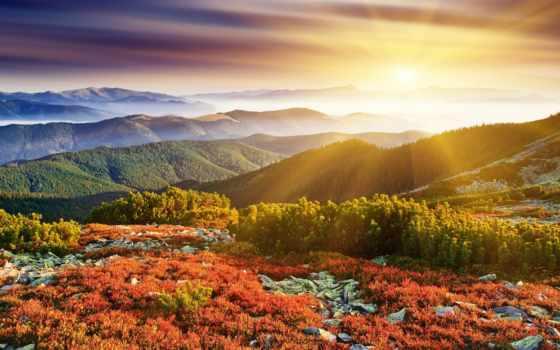 рассвет, природа, sun, rays, trees, холмы, трава, туман,