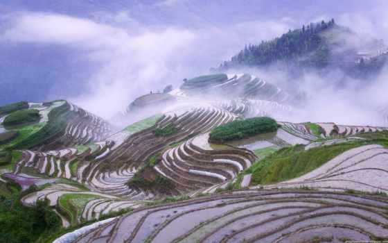terraces, mist