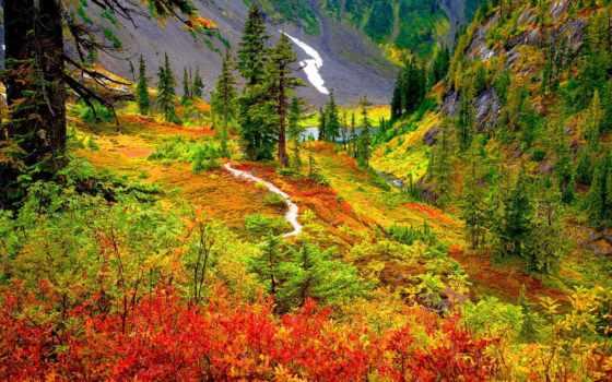 wilderness, гора, park, крюгер, desktop, lion, national, аляска,