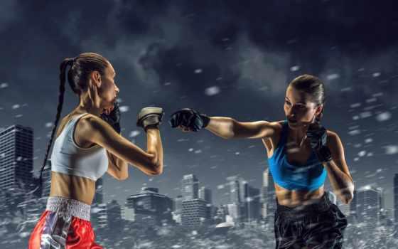 дуэль, спорт, impact, devushki, boxing, картинка, майки, снег, rendering, перчатки, ринг,