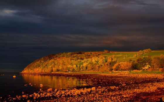 тучи, осень, шотландия, trees, лес, cromarty, небо, листва, firth, утро,