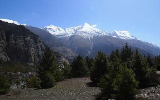best, top, зелёный, сети, мар, cover, горы, loneliness, гора,