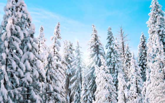 winter, yosemite, снег, resolution, туры, widescreen,