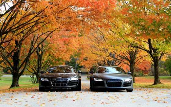 осень, ауди, машины