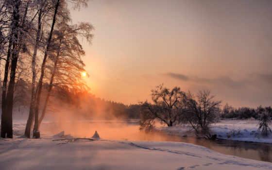 закат, деревья
