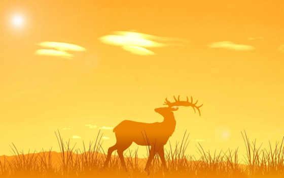 лань, закат, sun, alcatel, от, янв, природа,