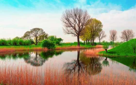 природа, весна, англия, май, wallpapersafari,