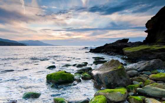 камень, пляж, море, спина,