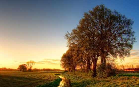 весна, ранняя, поле, природа, небо, landscape, water,