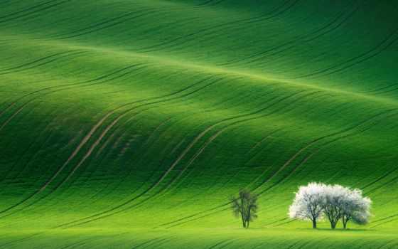 grassland, зелёный, stock, mediapad, huawei, landscape,